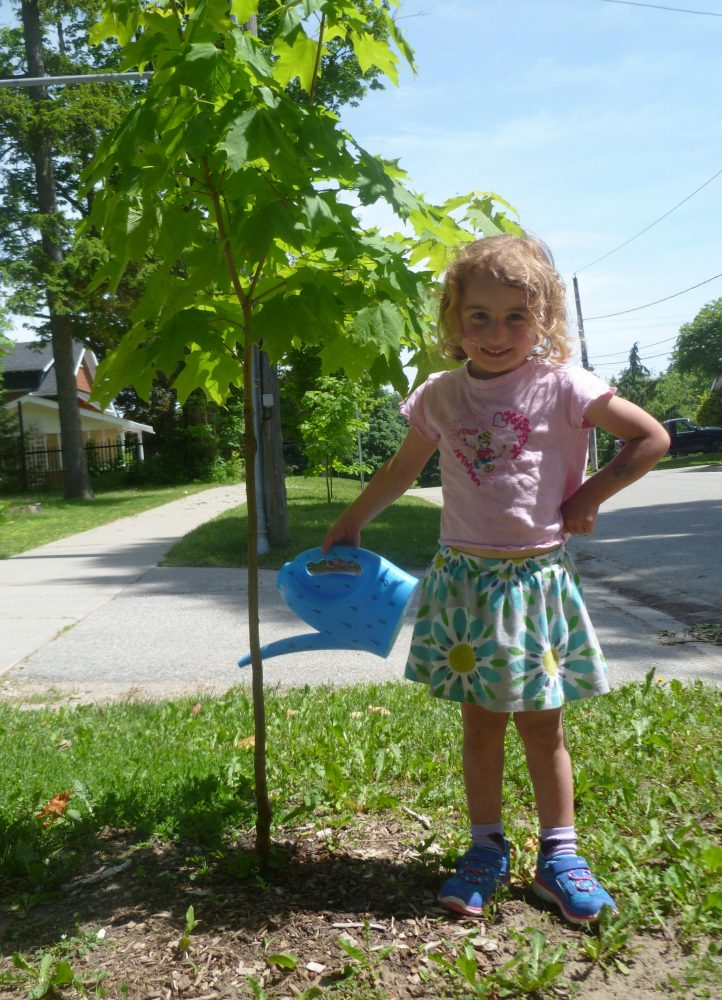 Youre never too young to steward a tree 2
