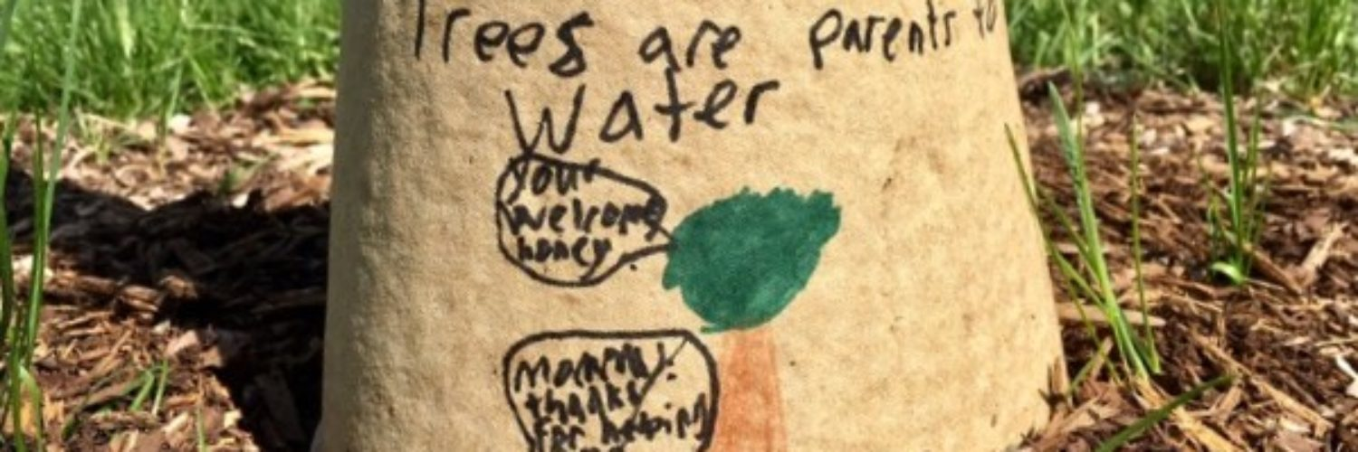 """old tree guard with drawing of trees talking says """"trees are parents to water"""""""