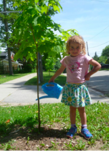 little girl watering a young tree