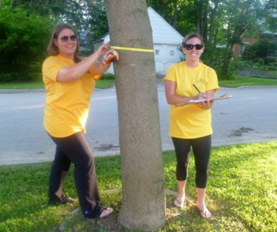 Two volunteers working on tree inventory
